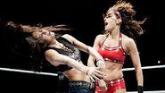 WWE World Tour 2013 - London.2