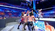 WrestleMania 33.65