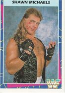 1995 WWF Wrestling Trading Cards (Merlin) Shawn Michaels 6