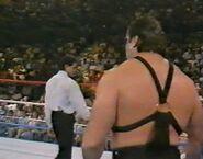 1.9.88 WWF Superstars.00016