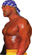 HulkHogan patriot