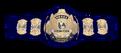 WWF TITLE 1988-1989