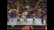 Survivor Series 1993.00019