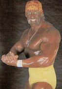 Hulk Hogan 18