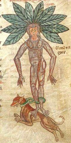 File:Medieval bestiary1 - Edited.jpg