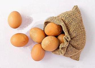 File:Egg-sack.jpg