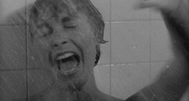 File:Shower 25.jpg
