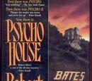 Psycho House (novel)