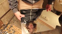Jesse-MirrorShard