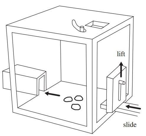 File:Two-action task paradigm.jpg
