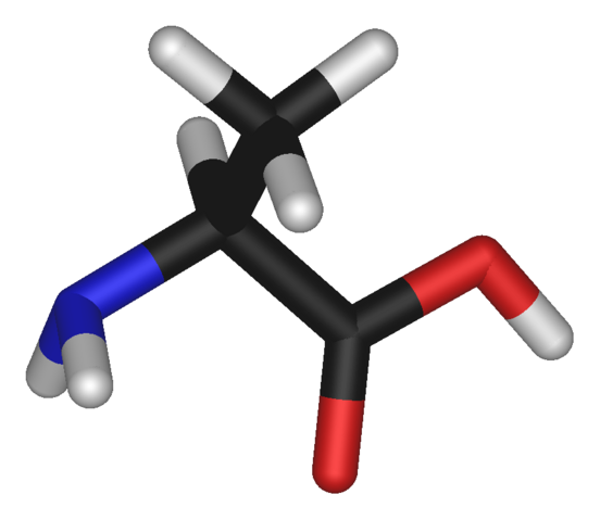 File:L-alanine-3D-sticks.png