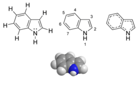 Indole chemical structure
