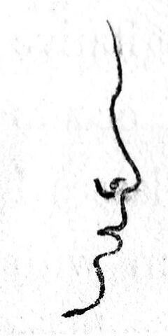 File:Class V nose.jpg