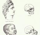 Scientific racism