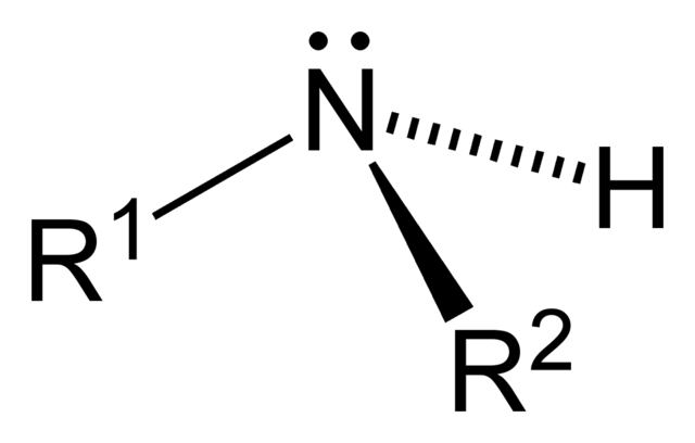 File:Secondary-amine-2D-general.png
