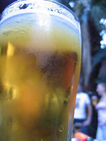 File:Glass of beer Australia Day 2005.jpg