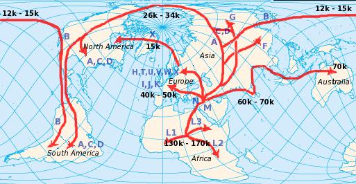 File:Human mtDNA migration.png