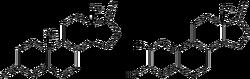 Reaction-Androstendione-Estrone