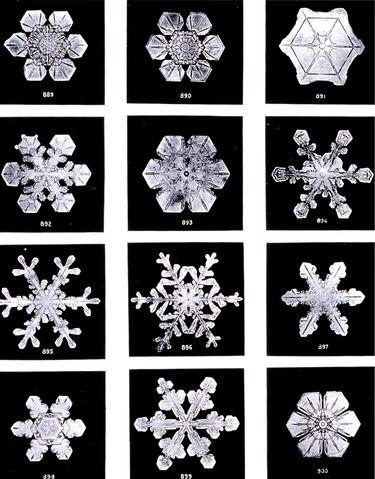 File:SnowflakesWilsonBentley.jpg