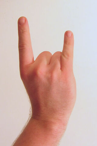 File:Gesture raised fist with index and pinky lifted.jpg