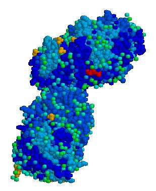 Acid beta glucosidase