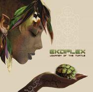 Ekoplex-journey-of-the-turtle-300x297