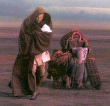 Obi-Wan-Kenobi-obi-wan-kenobi-29218611-400-383.jpg