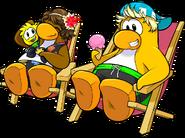 1000px-Penguins34