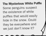 The-mysterious-white-puffle-myth