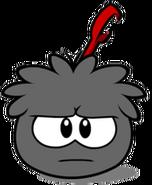 Black Puffle (18)