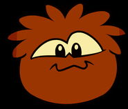 Brown puffle erqew