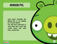1000px-Minion Pig Toy Care