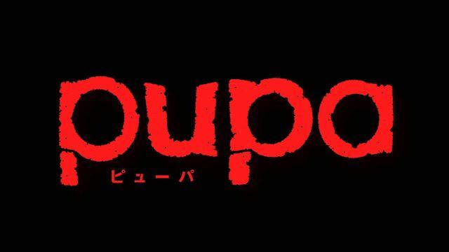 File:Pupa-0101.jpg