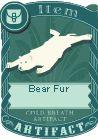 File:Bear fur.jpg