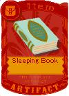 Sleeping Book