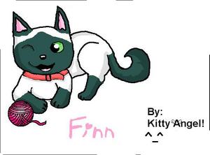 Finn by Kitty Angel