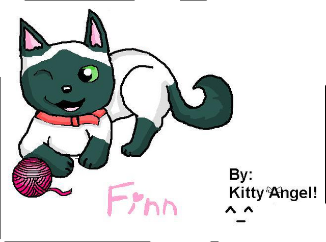 File:Finn by Kitty Angel.png