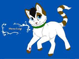 Meow Luigi