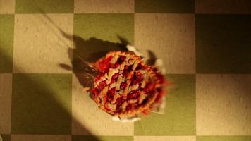 Pie-lette 51