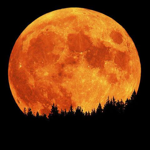 File:Full moon.jpg