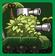 0067 avatar
