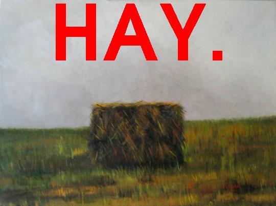File:Hay.jpg