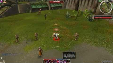 Damage test (skill chain 2) Armor lvl 100