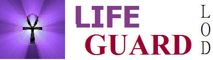 File:Life GUARD.png