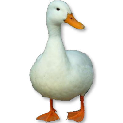 File:Hdduck.png