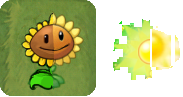 File:Sunflowers Pvz12.png