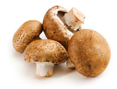 File:Mushrooms.jpg