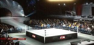FLW Arena