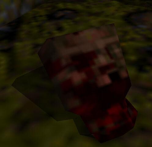 File:Zombie gibbed head.jpg
