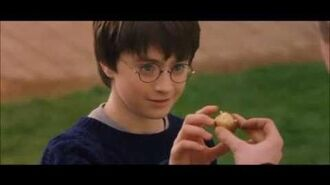 Oliver Wood explaining Quidditch